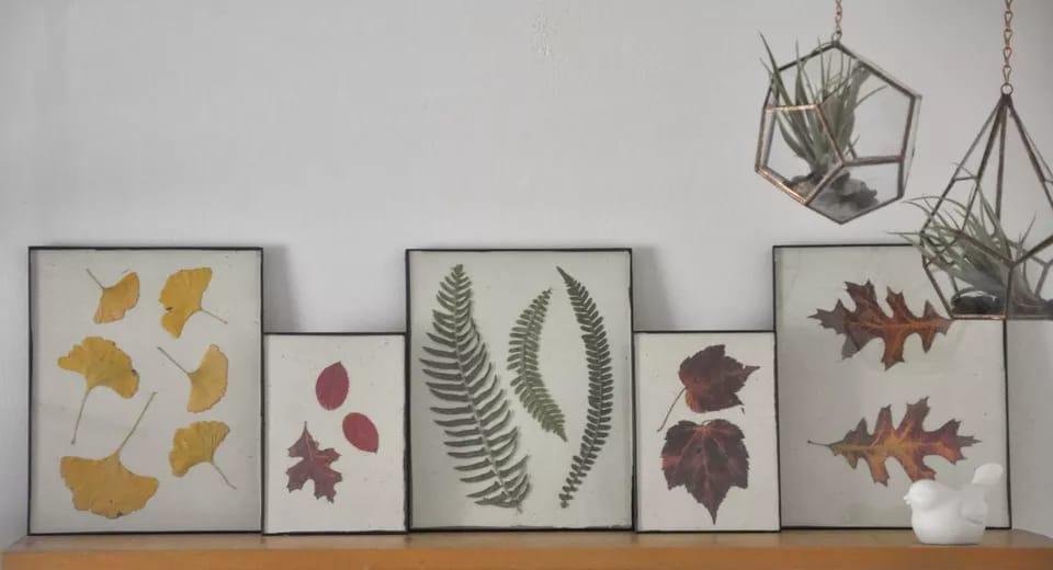 Disa mënyra se si mund të dekorojmë ambientet e shtëpisë me gjethet e vjeshtës!